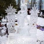 20200208-BloorYorkvilleBIA-Icefest-A-0955 (Large)