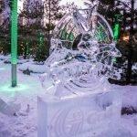 20200208-BloorYorkvilleBIA-Icefest-A-1269 (Large)