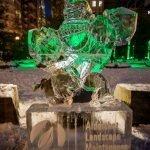 20200208-BloorYorkvilleBIA-Icefest-B-0570
