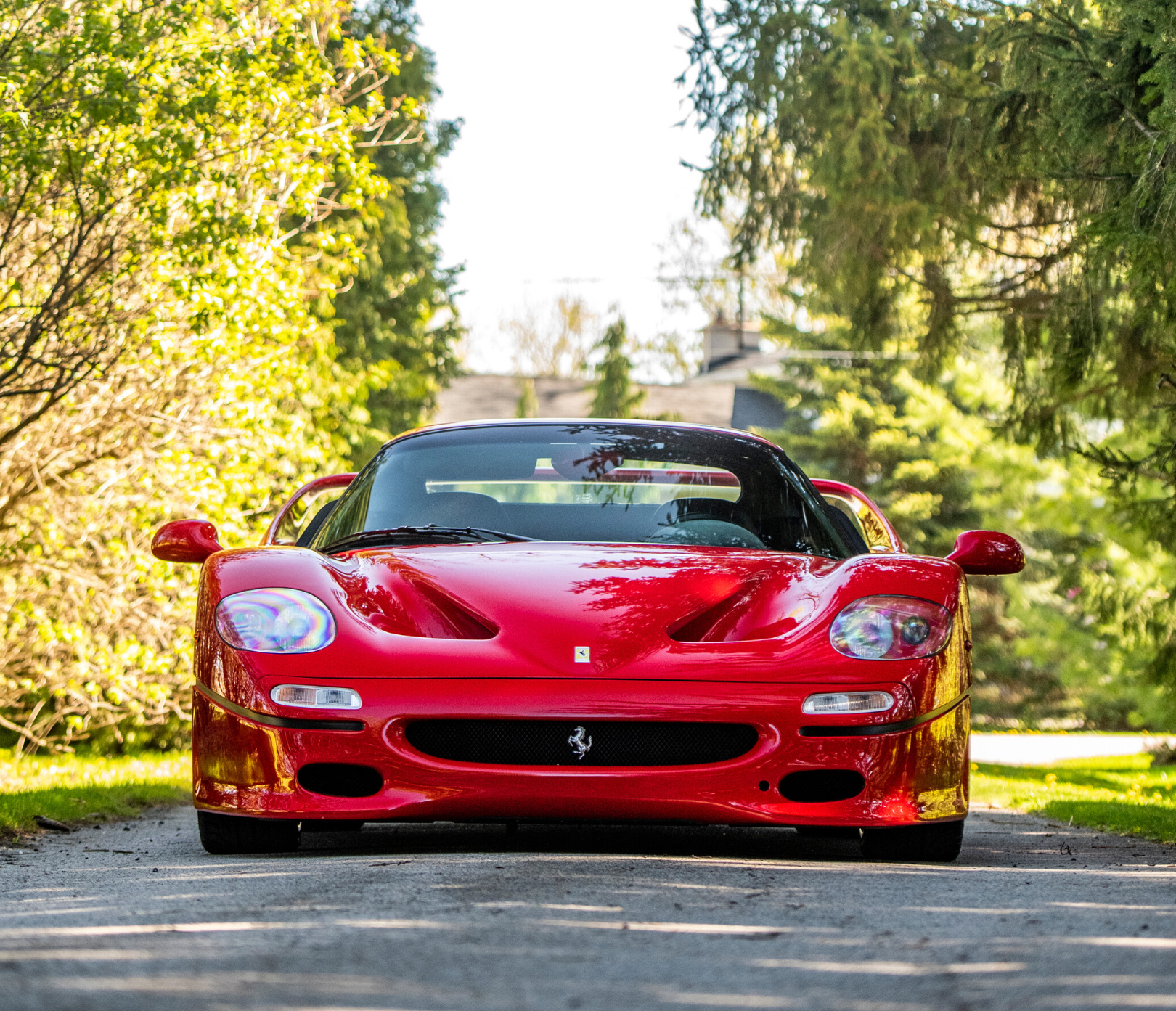 Ferrari F50 view from the front hood on a trail