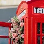 Bell Media Bloom Box-8