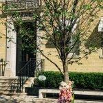 Bloor Yorkville Floral Tree-1