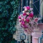 Bloor Yorkville Pink Floral Doorway-4