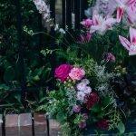 Bloor Yorkville Pink Floral Doorway-6