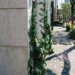 Brunello Cucinelli Entrance-7