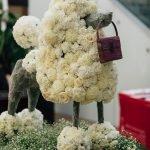 Fleurs de Villes CHIEN-1